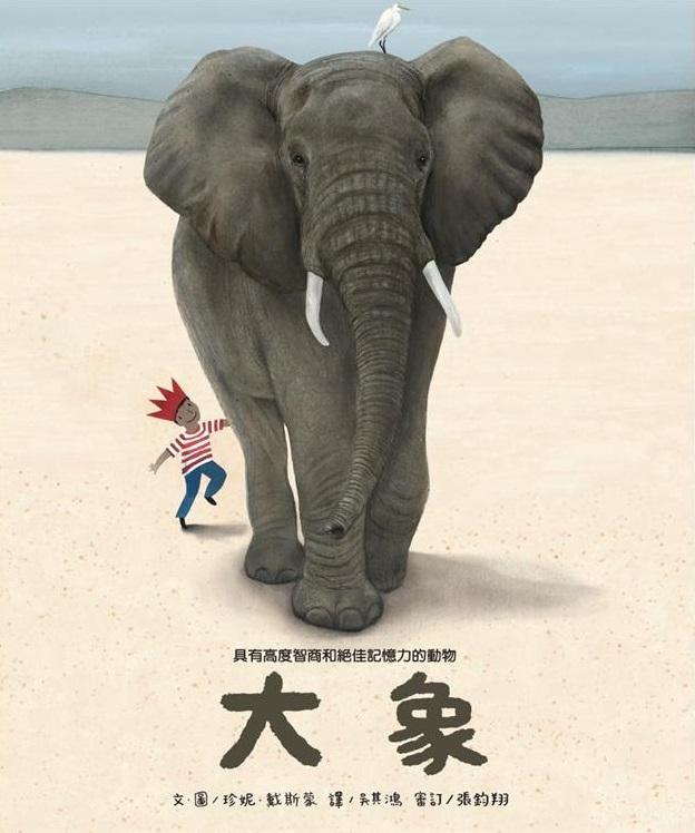 高度智商和絕佳記憶力的動物: 大象